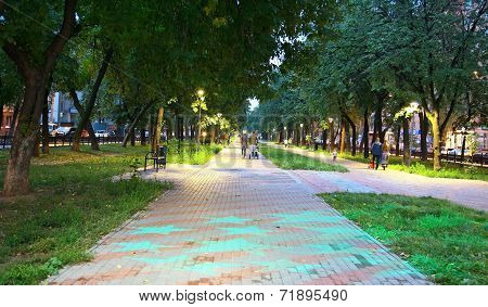 City Park Zvezdinka With Evening Blue Stars