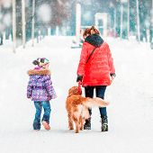 image of puppies mother dog  - mum with a daughter and their dog walking in winter park - JPG