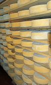 picture of milkman  - many forms of fresh cheese in the dairy of a mountain hut - JPG