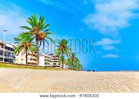 Seafront beach coast