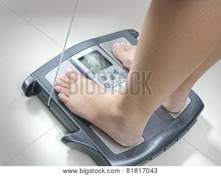 BODY MASS SCALES