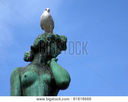 Woman with pigeon