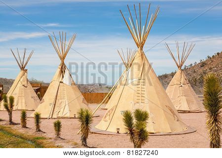 National wigwam of American Indians