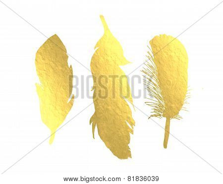 Bird Feather in Gold Foil