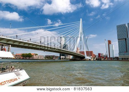 Rotterdam Harbor With Erasmus Bridge