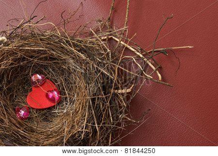 Nest Of Love