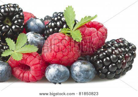 Group of berries