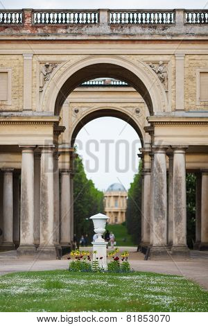 Flowerbed In Sanssouci