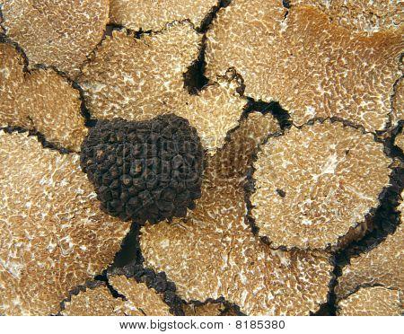 Sliced Black Truffles