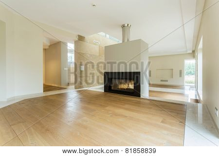 Fireplace In Spacious Room