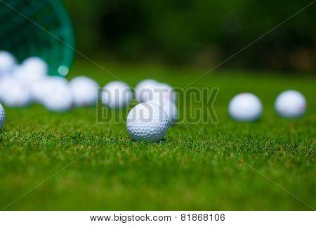 Golf Balls bucket