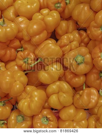 orange bell peppers closeup