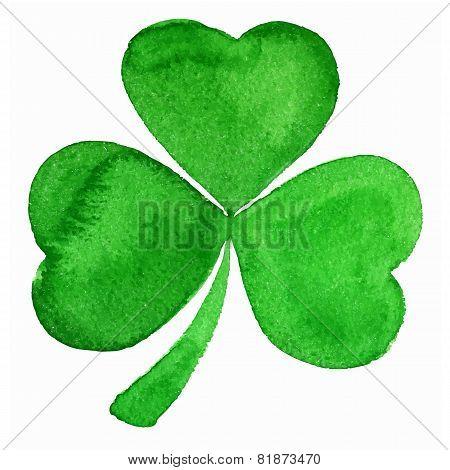 Vector green watercolor clover