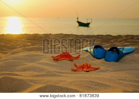 Starfish and flippers on sea  sand sunset