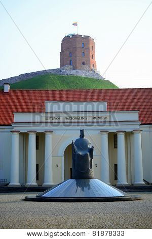 Lithuanian National Museum And Sculpture In Vilnius City