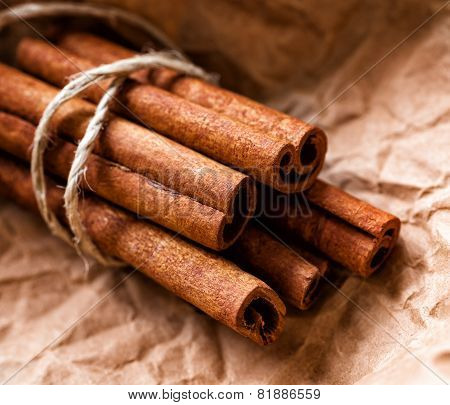 Cinnamon Sticks Bunch