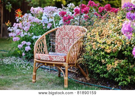 chair and blooming phlox in summer garden