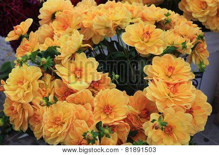 Yellow Flower Bouquet At An Urban Farmers Market