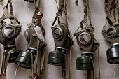 picture of gas mask  - Photo of the WW II gas mask - JPG