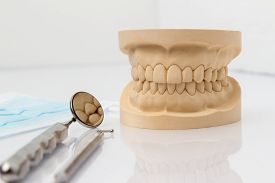 stock photo of false teeth  - Dental mold showing the teeth of the upper and lower jaw with dental tools and a face mask on a wooden table in a dental care and examination concept - JPG