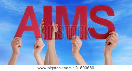 Hands Holding Red Straight Word Aims Blue Sky