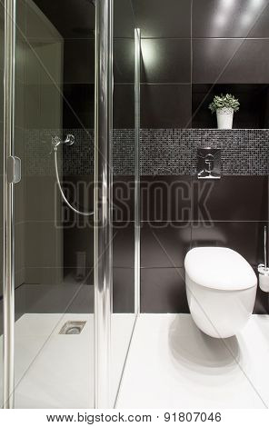 Shower And Lavatory