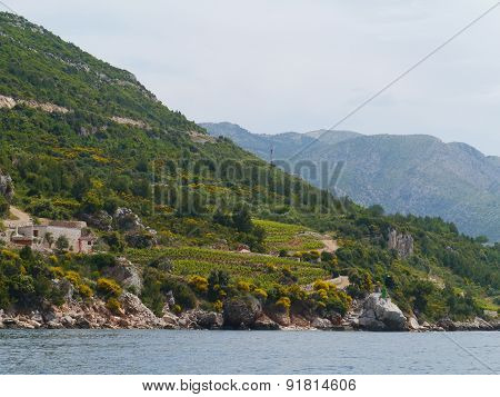 The Croatian  peninsula Peljesac