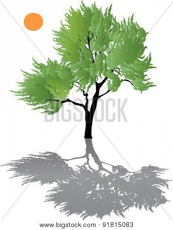 illustration with green tree isolated on white background