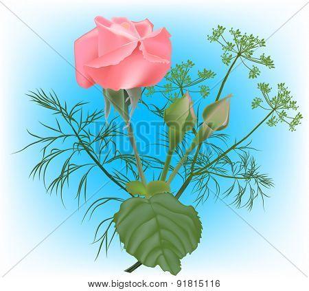 illustration with rose flower on light blue background