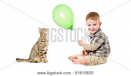 Cheerful boy and cat Scottish Straight