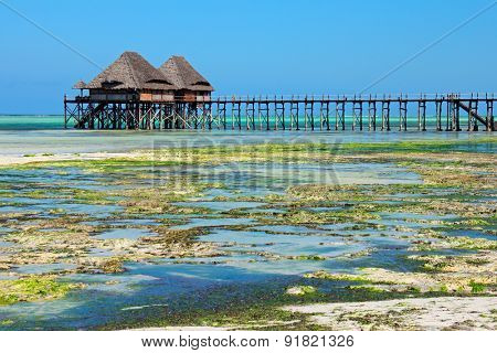Wooden pier and thatched roofs on a tropical beach, Zanzibar island