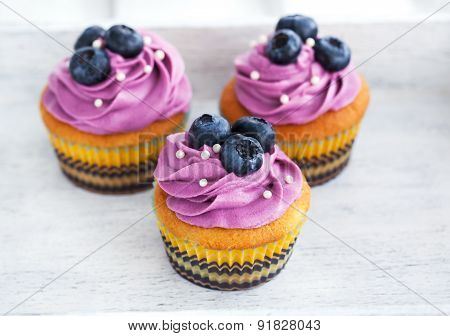 Delicious Blueberry Cupcakes