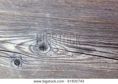 grain in the wood