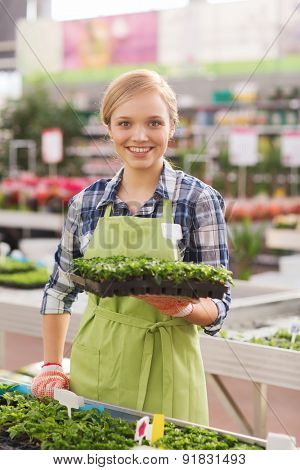 people, gardening and profession concept - happy woman or gardener holding seedling in greenhouse