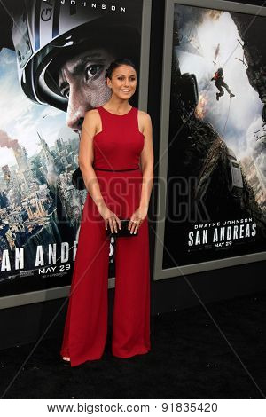 LOS ANGELES - MAY 26:  Emmanuelle Chriqui at the