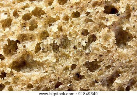Background Bread Dough Pasta