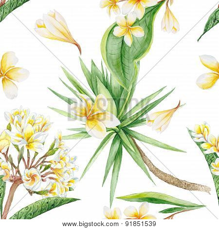 Exotic Plants Pattern