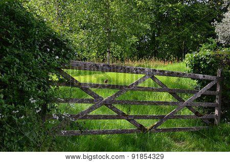 Rustic wood farm gate