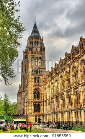 The Natural History Museum In London - United Kingdom