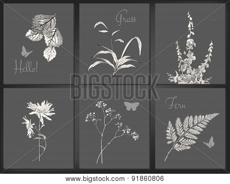 Vector floral card set