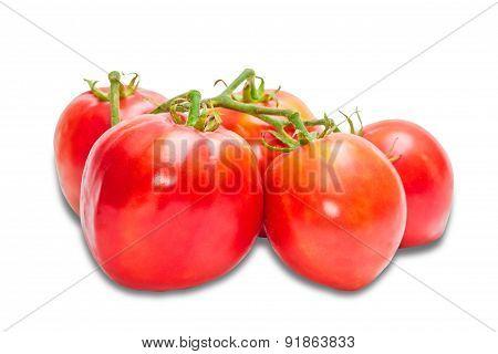 Bunche Of Tomatoes