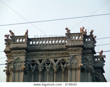 Gargoyles On High