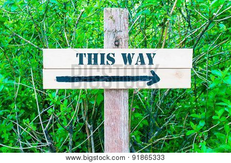 This Way Directional Sign