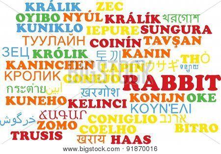Background concept wordcloud multilanguage international many language illustration of rabbit