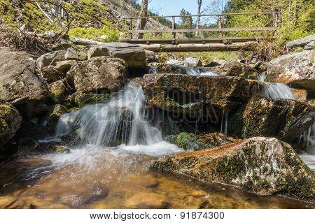 Cascade Creek And Wooden Footbridge