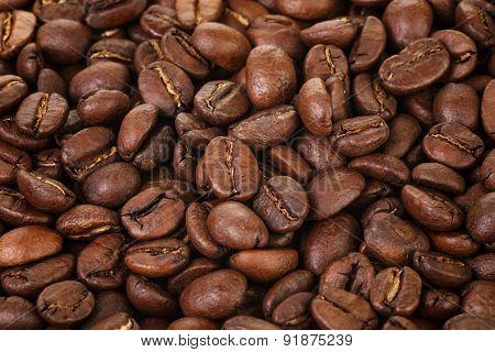 freshly roasted premium coffee beams close up