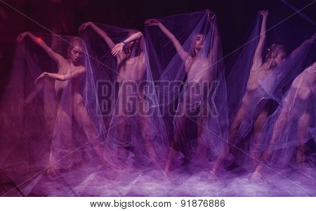 sensual and emotional dance of beautiful ballerina through the veil
