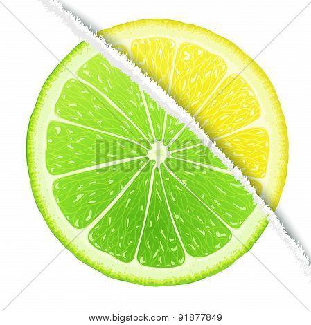 Lemon-lime design