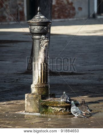 fountain venice