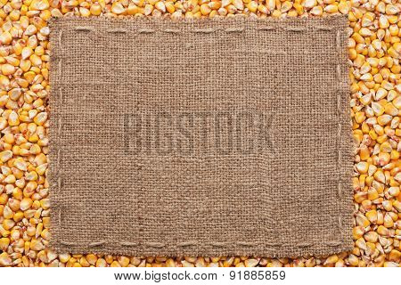 Classical Frame On Corn Grain